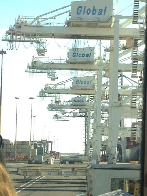 global cranes